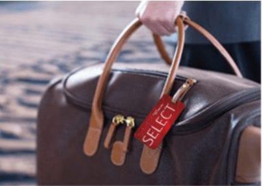 skymiles select bag tag